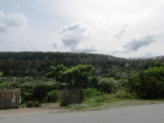 Groenvallei, Sedgefield - ZAF (photo 4)