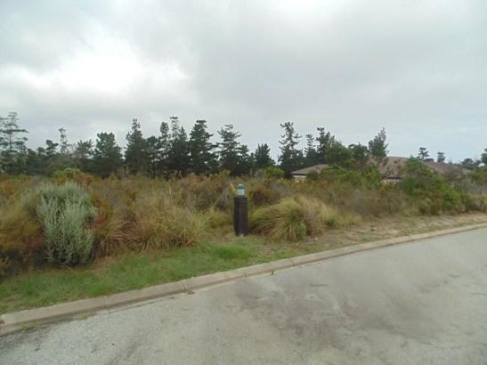 Pezula Golf Estate, Knysna - ZAF (photo 3)