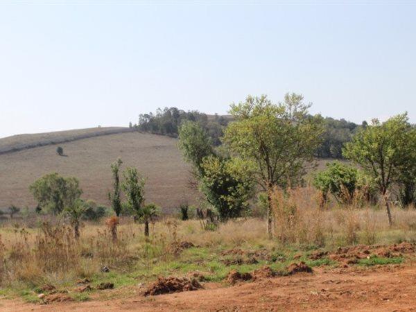 Muldersdrift, Krugersdorp - ZAF (photo 4)