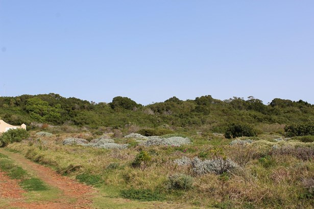 14 Beech , Cape St Francis, St Francis Bay - ZAF (photo 4)