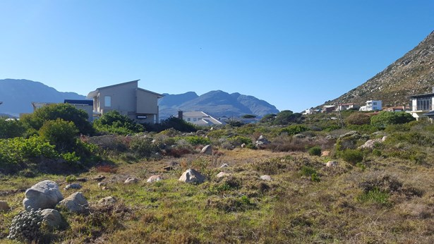 5 Albatross, Pringle Bay - ZAF (photo 3)