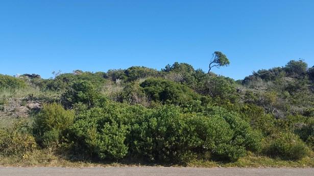 72 Buffels, Pringle Bay - ZAF (photo 1)