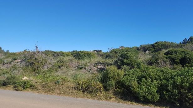 72 Buffels, Pringle Bay - ZAF (photo 2)