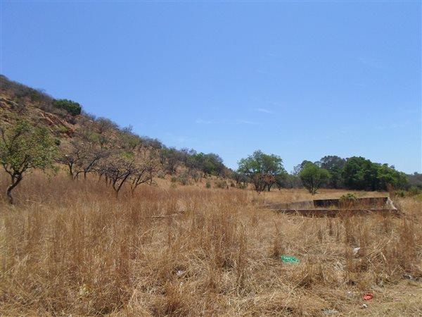 Geelhoutpark, Rustenburg - ZAF (photo 5)