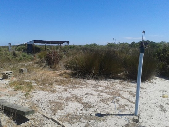 Hartebeesfontein, Hopefield - ZAF (photo 5)