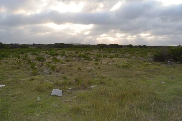 Gouritsmond - ZAF (photo 3)