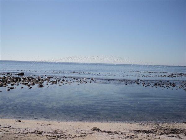 Shelley Point, St Helena Bay - ZAF (photo 5)