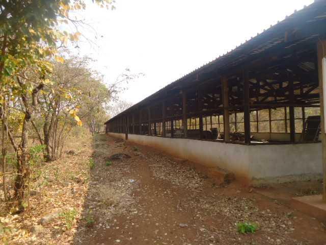 New Kasama, Lusaka - ZAF (photo 4)