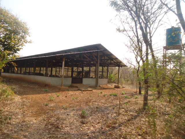 New Kasama, Lusaka - ZAF (photo 5)