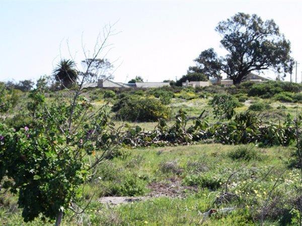 St Helena Bay - ZAF (photo 5)