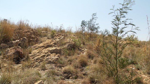 Rangeview & Ext, Krugersdorp - ZAF (photo 5)