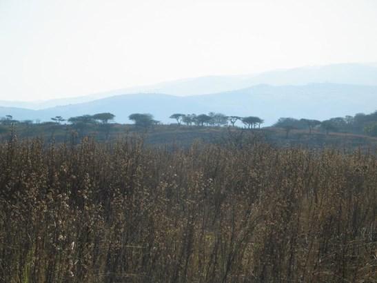 Darnall - ZAF (photo 2)