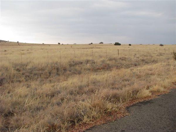 Bloemfontein - ZAF (photo 3)