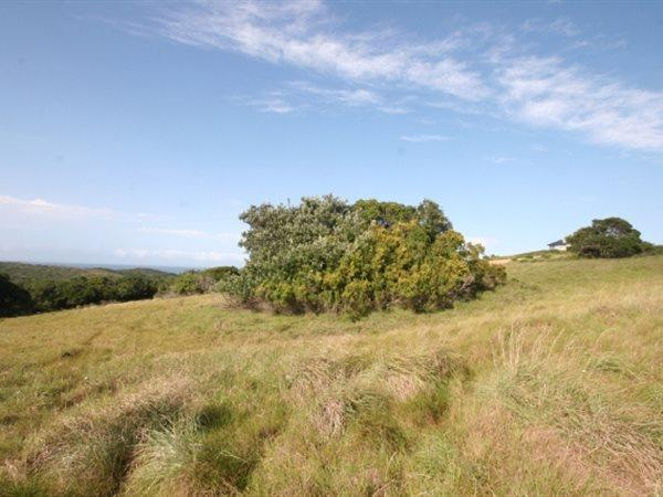 8 Puffback Pasture, Kenton On Sea - ZAF (photo 4)