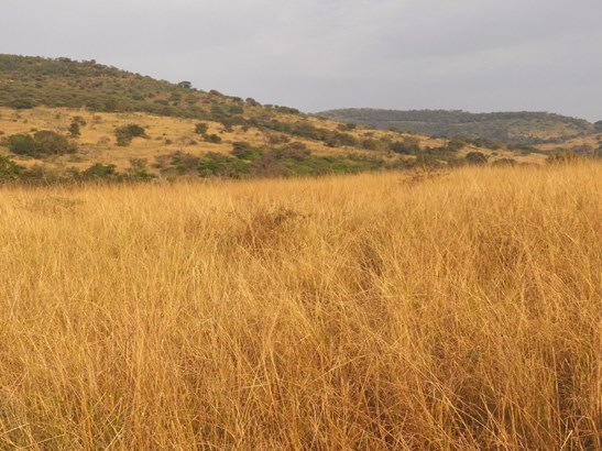 Kwadukuza, Stanger - ZAF (photo 5)