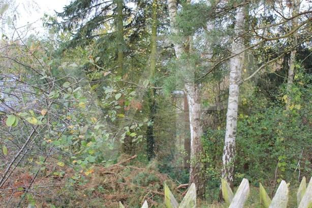 Birkenwerder - DEU (photo 2)
