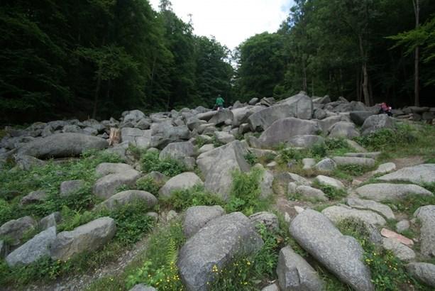 Lautertal (odenwald) / Reichenbach - DEU (photo 3)