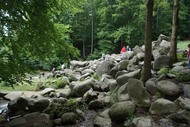 Lautertal (odenwald) / Reichenbach - DEU (photo 5)