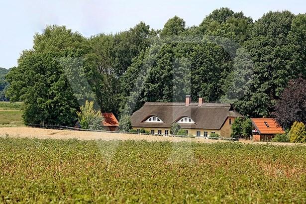 Scharnebeck / Nutzfelde - DEU (photo 1)