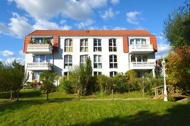 Potsdam / Eiche - DEU (photo 1)