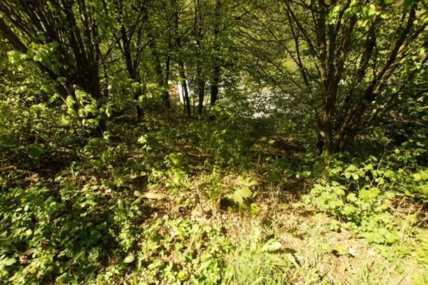 Wald-michelbach - DEU (photo 3)