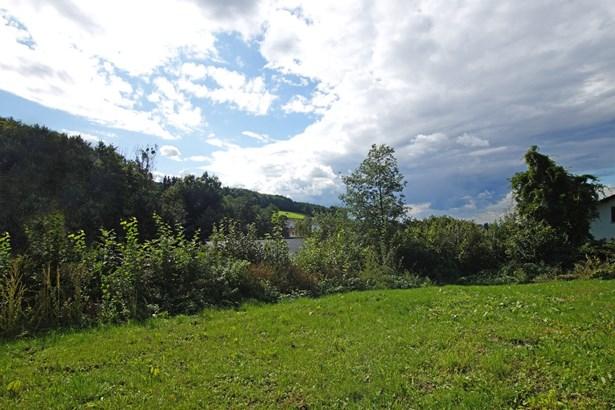 Birkenau - DEU (photo 3)