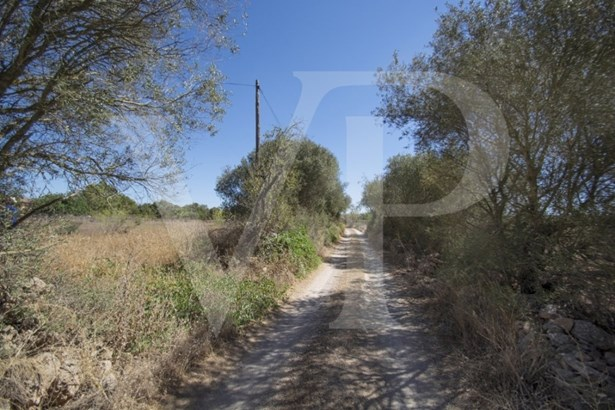Campos - ESP (photo 3)