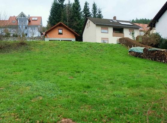 Wiesthal - DEU (photo 4)