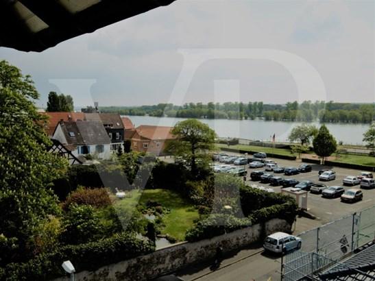 Oestrich-winkel - DEU (photo 4)