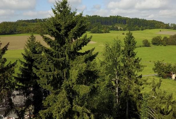 Gedern - DEU (photo 5)