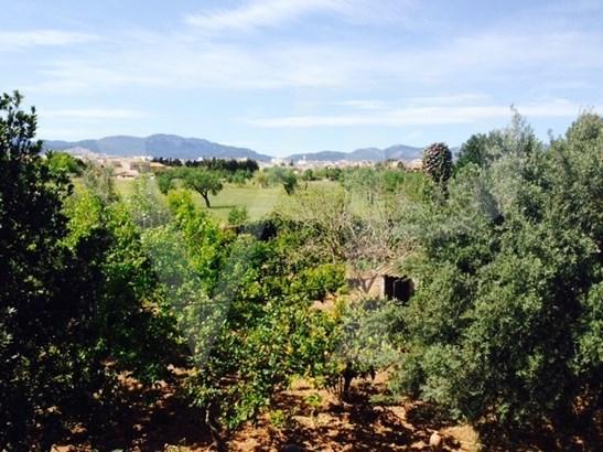 Marratxi - ESP (photo 5)
