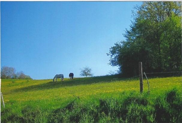 Beerfelden - DEU (photo 4)
