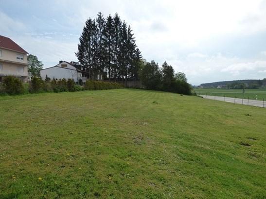Pfofeld / Rehenbühl - DEU (photo 1)