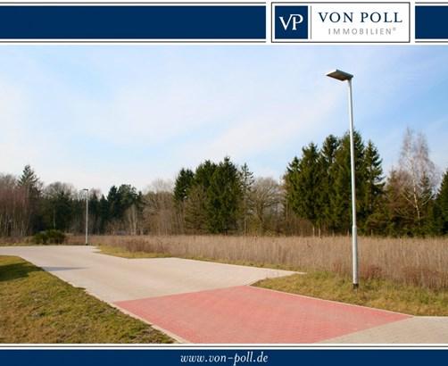 Schneverdingen / Wintermoor - DEU (photo 2)