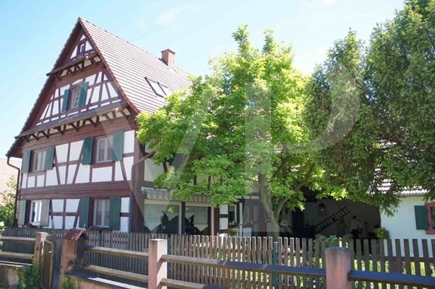 Kehl / Auenheim - DEU (photo 1)