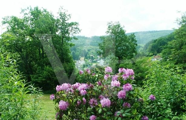 Schlangenbad / Wambach - DEU (photo 1)