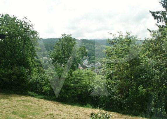 Schlangenbad / Wambach - DEU (photo 4)