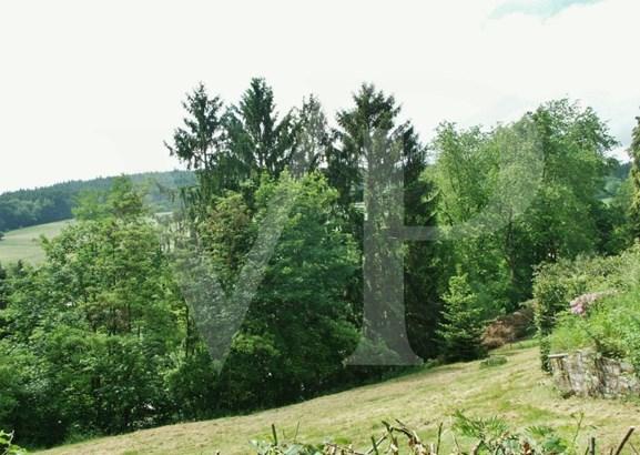 Schlangenbad / Wambach - DEU (photo 5)