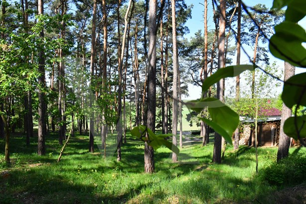 Heidesee - DEU (photo 2)