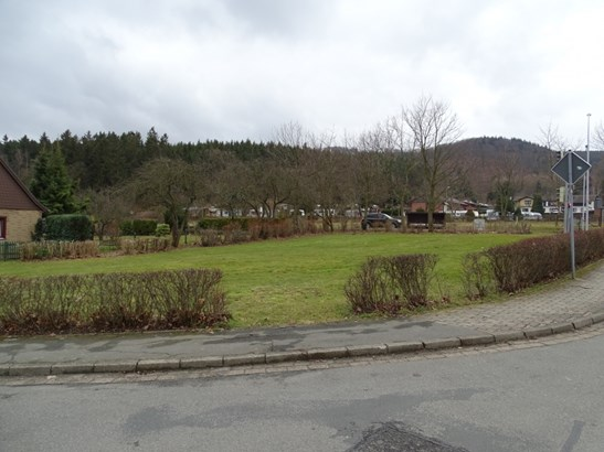 Bad Harzburg / Göttingerode - DEU (photo 4)
