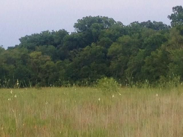 622 County Road 4223, Decatur, TX - USA (photo 5)