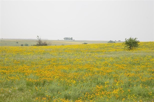 10902 E Rocky Creek Road Lot 84, Crowley, TX - USA (photo 4)