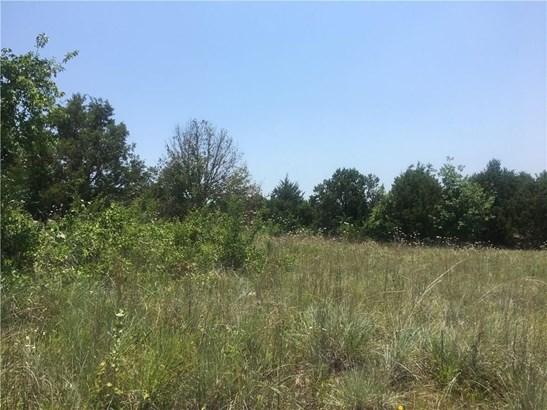 220 Otto, Weatherford, TX - USA (photo 5)
