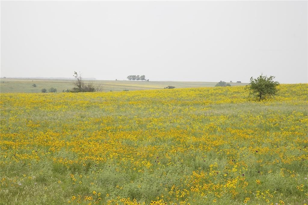 12403 E Rocky Creek Road Lt 5r1, Crowley, TX - USA (photo 4)
