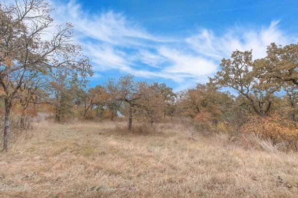 L 369 Three Forks Crossing, Chico, TX - USA (photo 2)