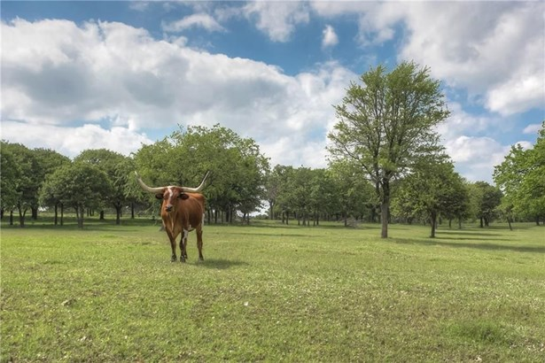 4021 Highland Oaks Lane, Cleburne, TX - USA (photo 4)