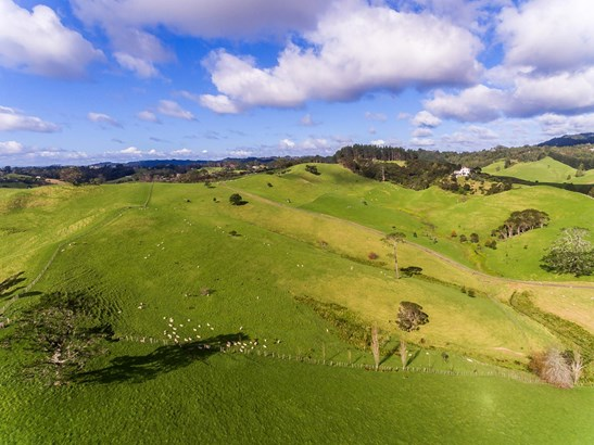 12 Gum Road, Henderson Valley, Auckland - NZL (photo 4)