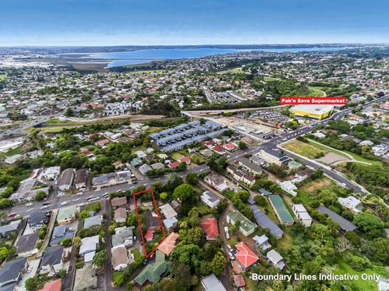 1236 New North Road, Mt Albert, Auckland - NZL (photo 1)