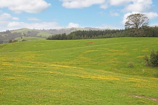 559 Kaiaua Road, Kaiaua, Auckland - NZL (photo 3)