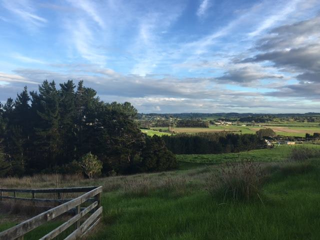8 Clearview Close, Dargaville, Northland - NZL (photo 3)